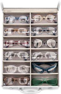 Proteye zaščitna očala (12 različnih modelov)